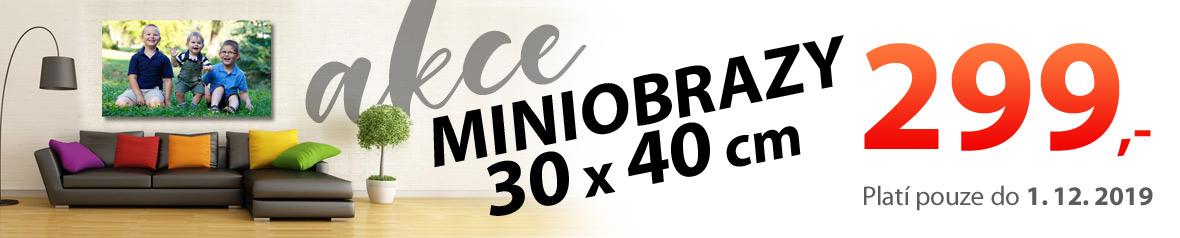 Akce na mini fotoobraz 40x30